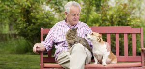 Pets Can Help Older Adults Cope With Chronic Pain