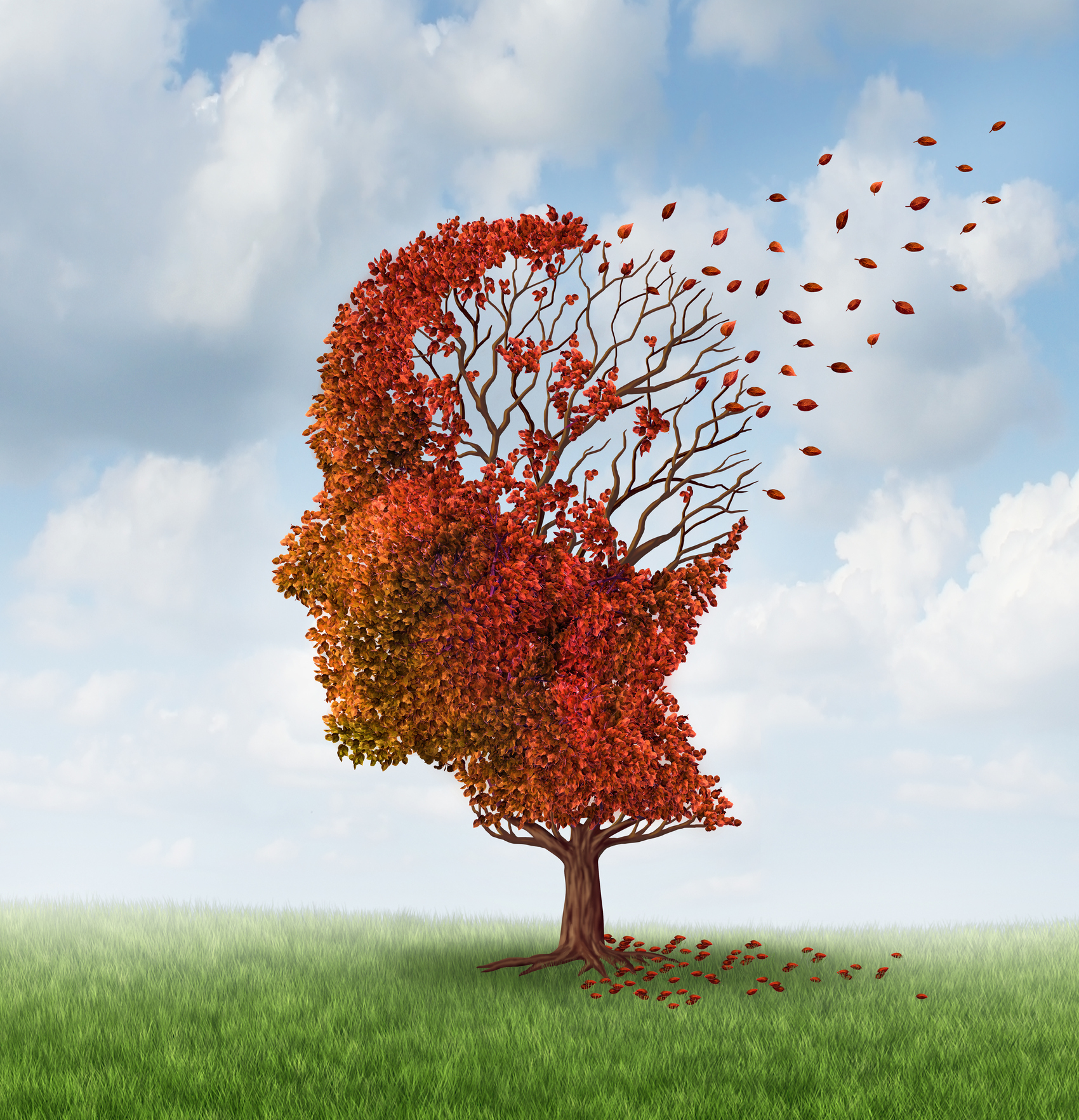 Concept of memory loss due to Alzheimer's disease or other dementia, autumn tree losing leaves