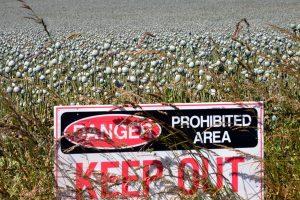 Johnson & Johnson Reaches $20.4 Million Settlement in Bellwether Opioids Case