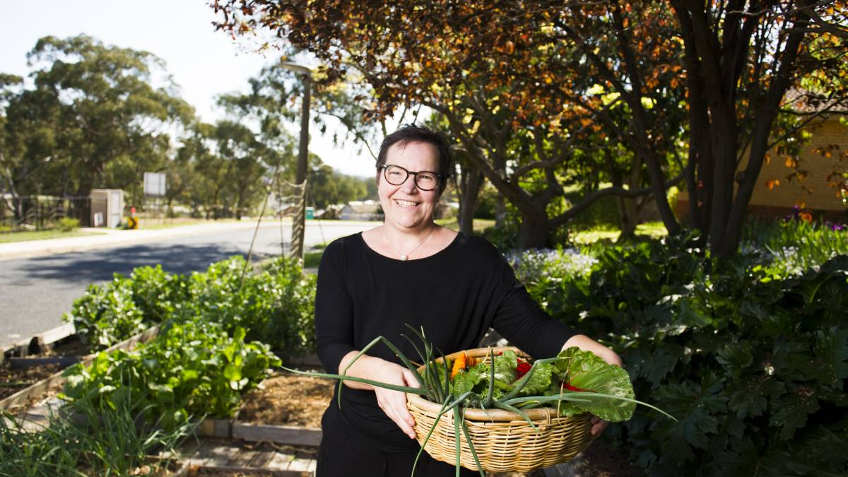 Jenean Spencer picking some fresh produce from her front garden at her home in Garren. Picture: Dion Georgopoulos