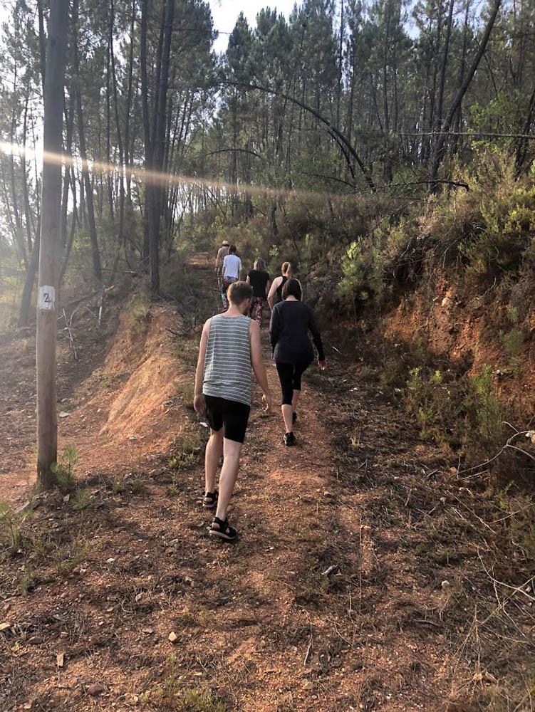 Vale de Moses forest walk